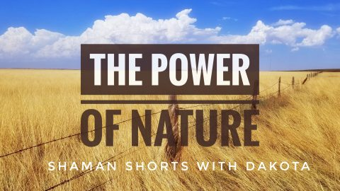 [Shaman Shorts 003] The Power of Nature