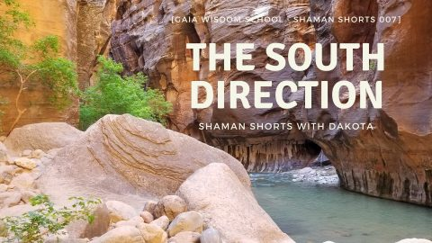 [Shaman Shorts 007] The South Direction
