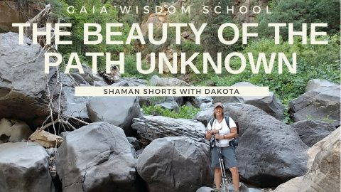 [Shaman Short 015]  Beauty of the Path Unknown