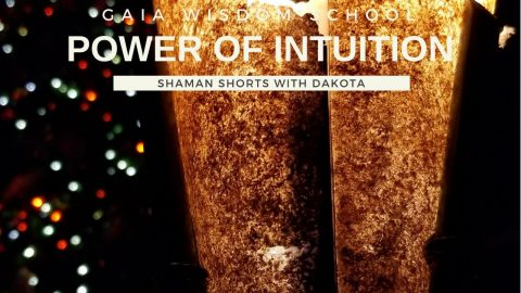 [Shaman Short 019] Power of Your Intuition