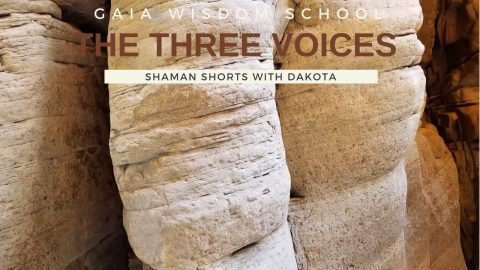 [Shaman Short 018] The Three Voices