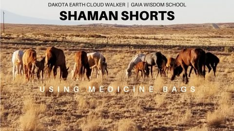 [Shaman Shorts 030] Helping the Spirits of Deceased Animals and Using Medicine Bags