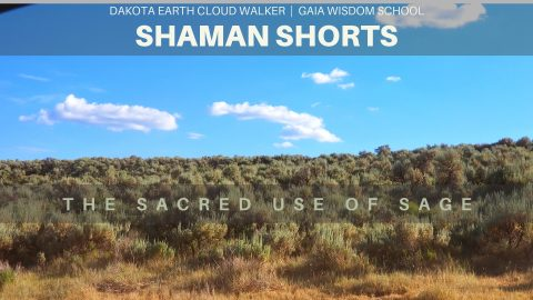 [Shaman Short 025] Sacred Use of Sage