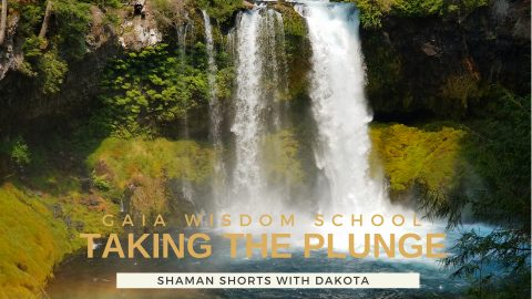 [Shaman Shorts 027] Taking the Plunge