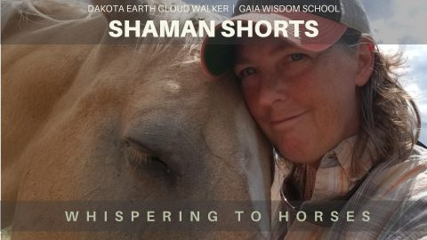[Shaman Shorts 029] Whispering to Horses