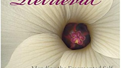 Books – Soul Retrieval
