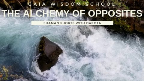 [Shaman Shorts 035] Alchemy of Opposites