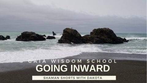 [Shaman Shorts 033] Going Inward