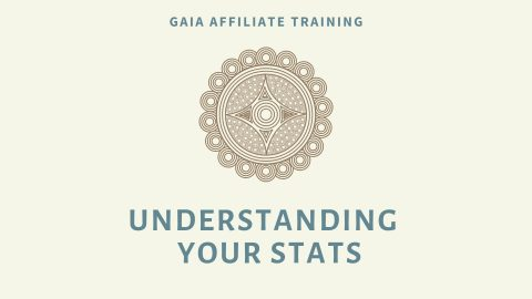 Affiliates: Understanding Your Stats