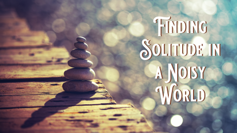 Finding Solitude in a Noisy World