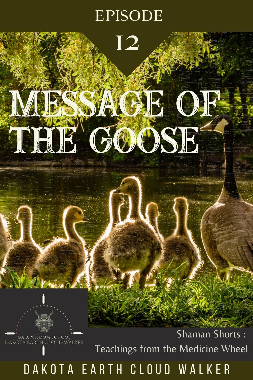 [Shaman Short 012]  Meaning of the Goose