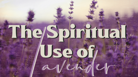 [Shaman Shorts 026] Spiritual Use of Lavendar